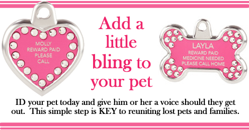 Diamond Pet Tags -LAFPOLI