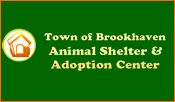 Brookhaven Animal Shelter and Adoption center
