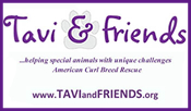 Tavi and Friends