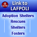Link your website to Lost and Found Pets Of Long Island--LAFPOLI