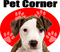 Pet Corner-LAFPOLI - Lost And Found Pets Of Long Island