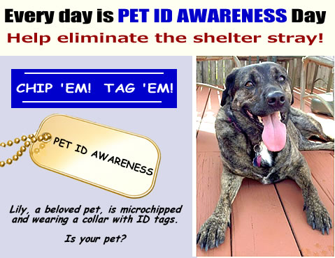 Pet ID Awareness!  Chip 'em  Tag 'em!  - LAFPOLI